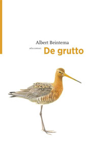 Albert Beintema De grutto Vogelboek