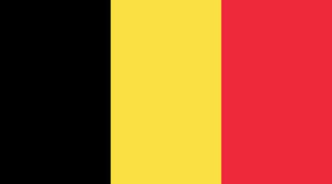 Vlaamse Schrijvers Boeken en Informatie