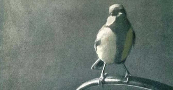 Eva Meijer Het vogelhuis Recensie Boekbespreking Roman