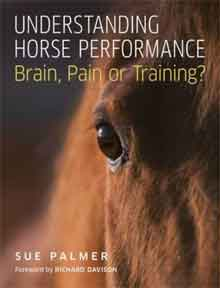 Recensie Brain, Pain or Training?