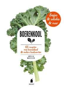 Kookboek Boerenkool Amelia Wasiliev Recensie Review