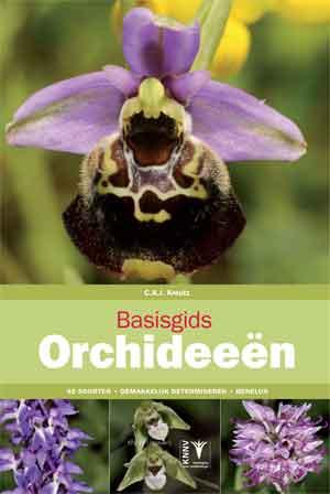 Basisgids Orchideeën Recensie Orchideeëngids