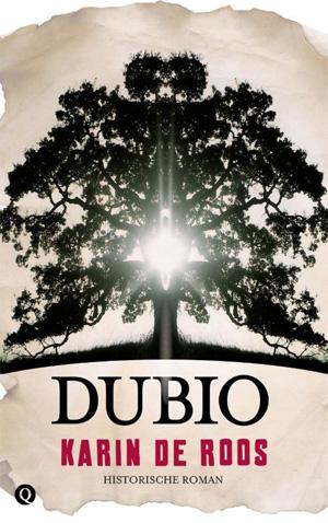Karin de Roos Dubio Recensie Middeleeuwen roman