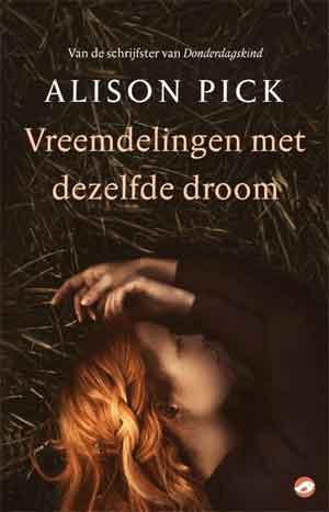 Allison Pick Vreemdelingen met dezelfde droom Recensie