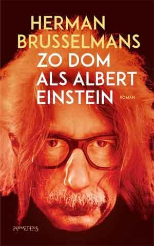 Herman Brusselmans Zo dom als Einstein Recensie
