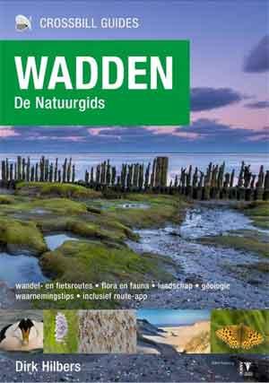 Wadden Natuurgids Recensie Dick Hilbers Wadden Natuurgids