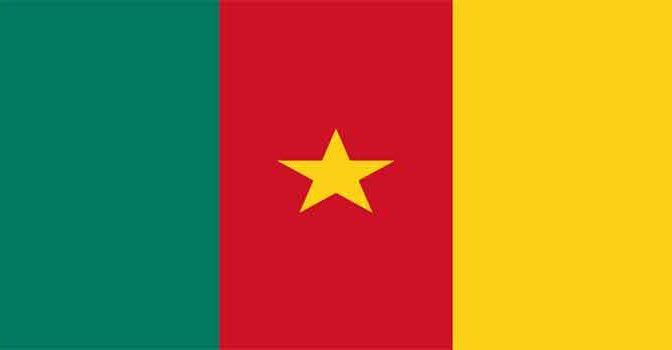 Kameroen Schrijvers Schrijfsters Romans en andere Boeken