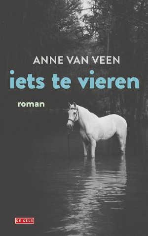 Anne van Veen Iets te vieren Recensie Roman