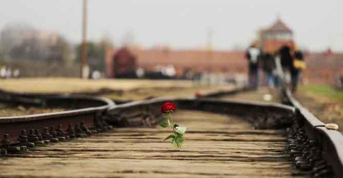 Boeken over Concentratiekamp Auschwitz en Birkenau