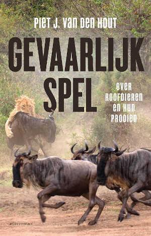 Piet J. van den Hout Gevaarlijk spel Recensie