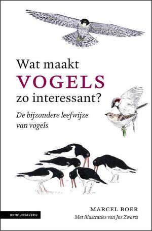 Marcel Boer Wat maakt vogels zo interessant Recensie