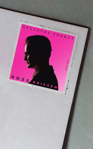 Splinter Chabot Roze brieven Recensie