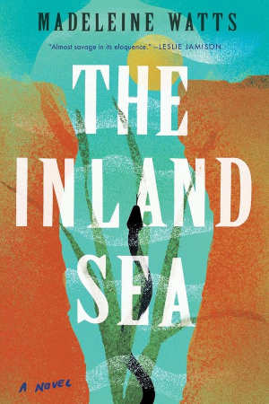 Madeleine Watts The Inland Sea Australische roman