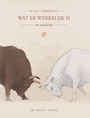 Nelleke Noordervliet Wat er werkelijk is Recensie