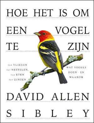 David Allen Sibley Hoe het is om een vogel te zijn Recensie